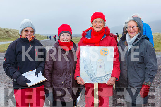 Mary Keane, Gill Mangan, Marie Claire Stacey and Sylvia Harvey says NO at the protest to Oyster farming at Rossbeigh beach on Sunday