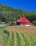 Pepin County, WI<br /> Farm with octagonal red barn and sweeping rows of corn fields in a valley under forested hills
