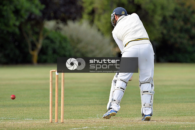 Club Cricket, Car Company Senior Final, Waimea Toi Toi v Wanderers CC 1st XI, Jubilee Park, Richmond Saturday 21th December 2013, New Zealand, Photos: Barry Whitnall/shuttersport