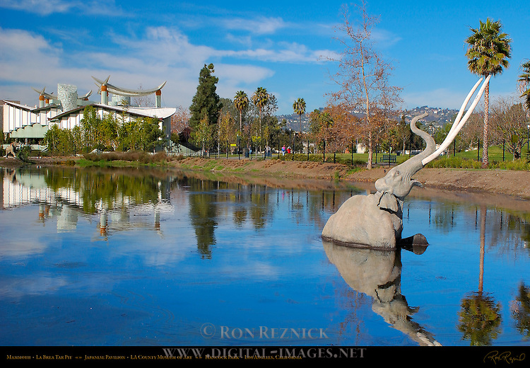 Mammoth, La Brea Tar Pit, Japanese Pavilion, LA County Museum of Art, Hancock Park, Los Angeles, California