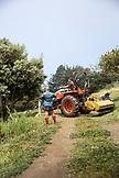 USA, California, Big Sur, Esalen, tilling a field at the farm, the Esalen Institute