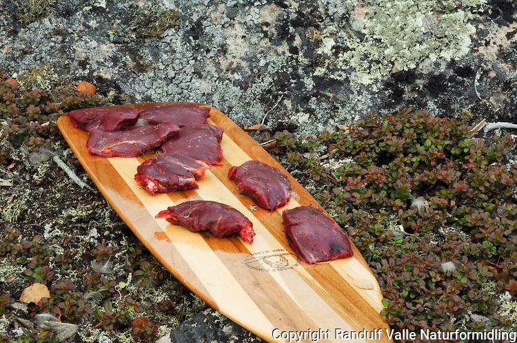 Rypebryst på padleåre ---- Bird meat on paddle
