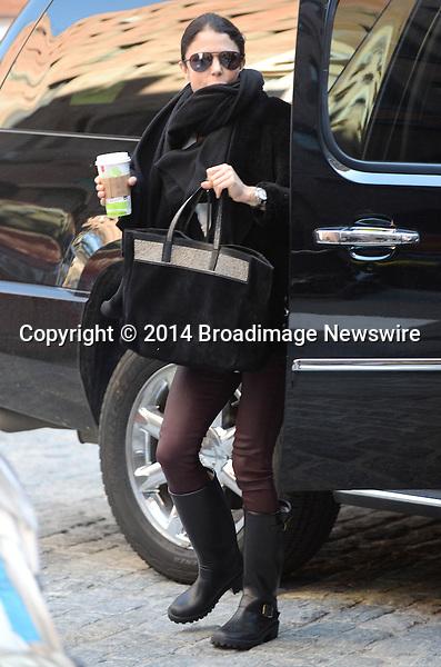 Pictured: Bethenny Frankel<br /> Mandatory Credit &copy; Jayme Oak/Broadimage<br /> Betheny Frankel picks up her daughter from school in NYC<br /> <br /> 3/13/14, New York, New York, United States of America<br /> <br /> Broadimage Newswire<br /> Los Angeles 1+  (310) 301-1027<br /> New York      1+  (646) 827-9134<br /> sales@broadimage.com<br /> http://www.broadimage.com
