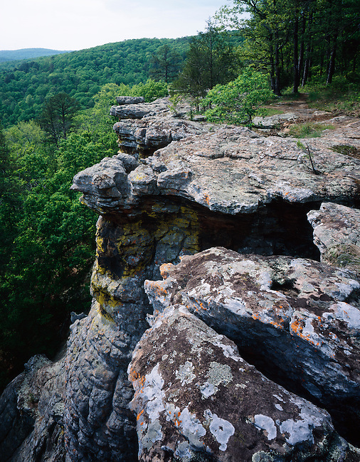 Bluffline; King's Bluff; Pedestal Rocks Scenic Area; Ozark National Forest; Arkansas