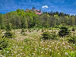 Nowy Wiśnicz 11-05-2019. Zamek w Wiśniczu – zamek położony na wzgórzu nad rzeką Leksandrówką  wzniesiony przez Jana Kmitę w 2. połowie XIV wieku.