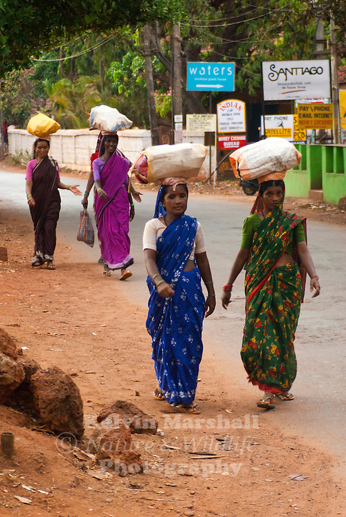 Local Indian women wearing Sarees taking their goods to the markets. Calangute beach, North Goa - India.
