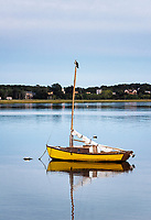 Osprey perched on the mast of a small sailboat, Wellfleet, Cape Cod, Massachusetts, USA.