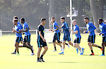 04.09.2019, Sportpark, Berlin, GER, 1.FBL, DFL,, Hertha BSC Training,<br /> DFL, regulations prohibit any use of photographs as image sequences and/or quasi-video<br /> im Bild Cheftrainer (Head Coach) Ante Comic (Hertha BSC Berlin)<br /> <br />       <br /> Foto © nordphoto / Engler