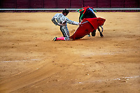 A Spanish bullfighter (matador) on his knees performs at the bullring in Torremolinos, Spain, 24 July 2006.
