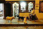 Dogs are very well treated throughout Bhutan, especially after the well known novel 'Dawa' journey of a Stray dog. Paro town at night, Bhutan..Bhutan the country that prides itself on the development of 'Gross National Happiness' rather than GNP. This attitude pervades education, government, proclamations by royalty and politicians alike, and in the daily life of Bhutanese people. Strong adherence and respect for a royal family and Buddhism, mean the people generally follow what they are told and taught. There are of course contradictions between the modern and tradional world more often seen in urban rather than rural contexts. Phallic images of huge penises adorn the traditional homes, surrounded by animal spirits; Gross National Penis. Slow development, and fending off the modern world, television only introduced ten years ago, the lack of intrusive tourism, as tourists need to pay a daily minimum entry of $250, ecotourism for the rich, leaves a relatively unworldly populace, but with very high literacy, good health service and payments to peasants to not kill wild animals, or misuse forest, enables sustainable development and protects the country's natural heritage. Whilst various hydro-electric schemes, cash crops including apples, pull in import revenue, and Bhutan is helped with aid from the international community. Its population is only a meagre 700,000. Indian and Nepalese workers carry out the menial road and construction work.