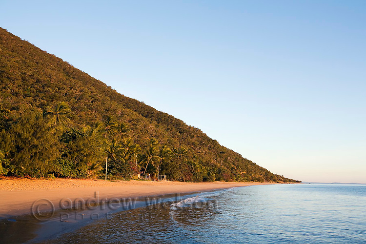 View along beach at dawn.  Ellis Beach, Cairns, Queensland, Australia