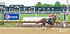 Chain Lightning winning at Delaware Park on 5/27/15