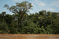 Rio Madre Dios, Lower Amazon, Peru