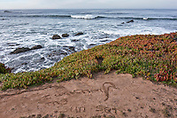 "A message in the sand, ""I watched the sun set,"" discovered one Sunday morning near Pigeon Point Lighthouse."