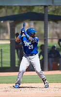 Kansas City Royals designated hitter Dennicher Carrasco (25) at bat during an Instructional League game against the Chicago White Sox at Camelback Ranch on September 25, 2018 in Glendale, Arizona. (Zachary Lucy/Four Seam Images)