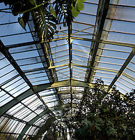 Tropical Rainforest Glasshouse (formerly Le Jardin d'Hiver or Winter Gardens), 1936, Rene Berger, Jardin des Plantes, Museum National d'Histoire Naturelle, Paris, France. View from below of the glass and metal roof structure of the Art Deco building.