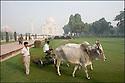2006- Inde- Le Taj Mahal.