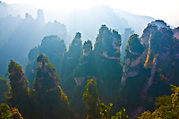 Pinnacles above Huangshi.Zhangjiajie National Forest Park .People's Republic of China.Wulingyuan National Park UNESCO WHS.Rock formations of  quartz-sandstone