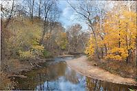Autumn woods; PA, Pennypack Creek; Lorimer Park