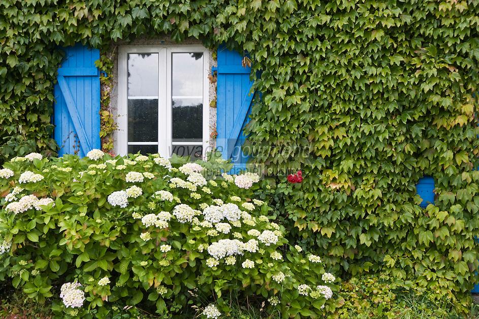 Europe/France/Bretagne/29/Finistère/ Doellan: Détail  fenêtre d'une maison de pêcheur sur le port
