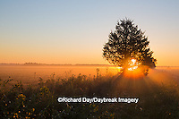 63893-02901 Sunrise at Prairie Ridge State Natural Area, Marion Co, IL