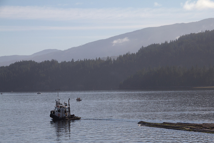 Vancouver Island, Alberni Inlet, log tow, timber industry,