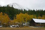Scenic: barn,aspen,snow capped mountain.<br />