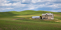 An abandoned house in the rolling hills of the Palouse. The Palouse Is a region of where there are no continuous valleys, and the hills do not connect to make long ridges. These hills were not created by rivers and streams, as is most of our landscape, but formed more like sandunes, with winds depositing silt to form of some of the most fertile soil in the country.