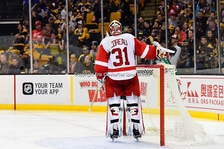 Tuesday, January 24, 2017: Detroit Red Wings goalie Jared Coreau (31) waits for game action to resume during the National Hockey League game between the Detroit Red Wings and the Boston Bruins held at TD Garden, in Boston, Mass. Boston defeats Detroit 4-3 in overtime. Eric Canha/CSM