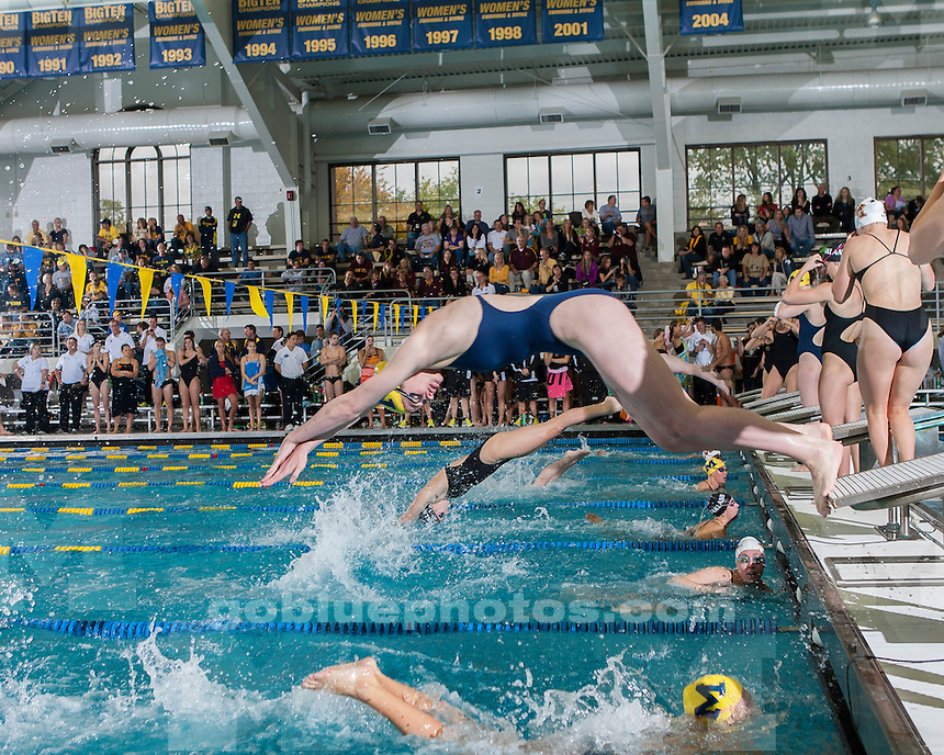 """The University of Michigan men's and women's swim and dive teams hosted the first ever """"Michigan Water Festival"""" at Canham Natatorium in Ann Arbor, Mich., on October 6, 2012."""