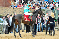 HOT SPRINGS, AR - FEBRUARY 19: My Boy Jack with jockey Kent Desormeaux winning the Southwest Stakes at Oaklawn Park on February 19, 2018 in Hot Springs, Arkansas. (Photo by Ted McClenning/Eclipse Sportswire/Getty Images)