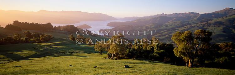 Farmland at Banks Peninsula. Akaroa harbour in background. Canterbury Region. New Zealand.