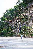Tourist Walking Along Farewell Spit, Golden Bay, South Island, New Zealand. Farewell Spit is a 75km long sand spit located in the Golden Bay area of South Island, New Zealand. An incredible variety of birds migrate to Farewell Spit, making it an extremely popular spot for bird watchers.