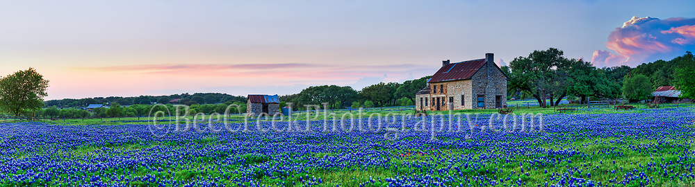 We capture this panorama of the bluebonnet farm house out in the texas hill country just as the sun was setting and you can see a big storm cloud that just blew up at sunset.  We later captured this storm cloud over the bluebonnet field after dark.