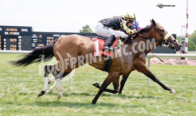 Take It Inside winning at Delaware Park on 8/9/14