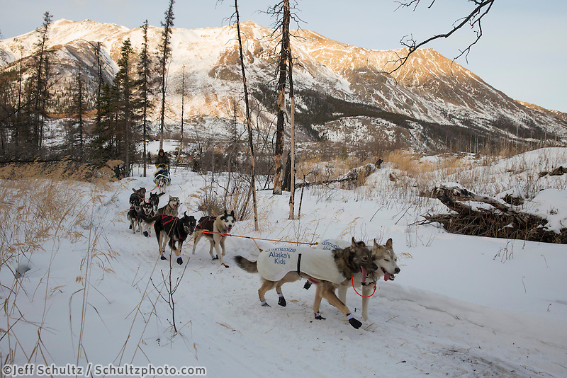 Rudy Demoski runs in a burn area of the trail after leaving the Rohn checkpoint on the way to Nikolai during the 2013 Iditarod sled Dog Race   March 5, 2013...Photo by Jeff Schultz Do Not Reproduce without permission