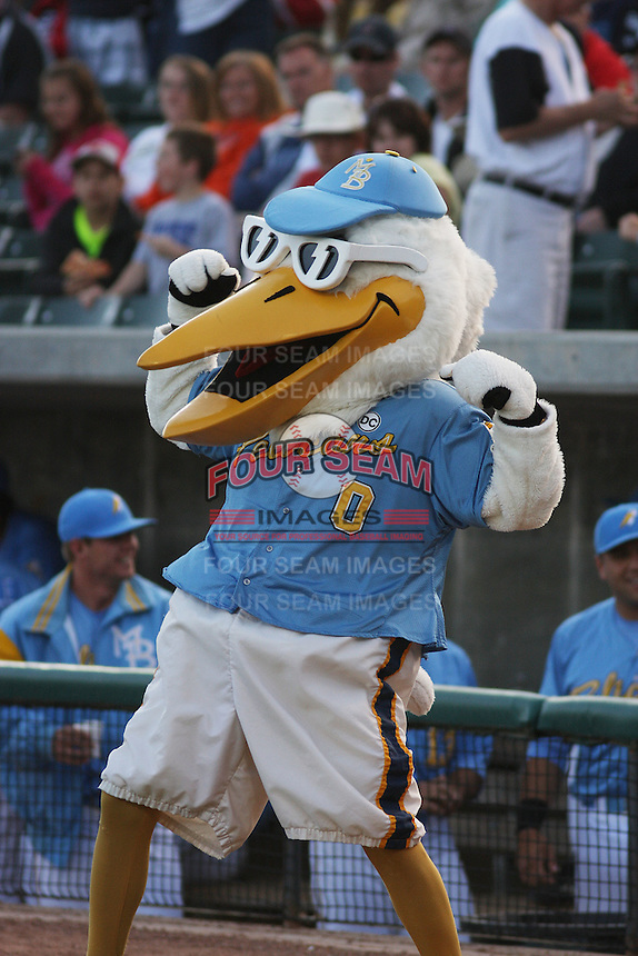 Myrtle Beach Pelicans mascot Splash Pelican #0 before a game against the Potomac Nationals at Tickerreturn.com Field at Pelicans Ballpark on April 10, 2012 in Myrtle Beach, South Carolina. Potomac defeated Myrtle Beach by the score of 6-4. (Robert Gurganus/Four Seam Images)