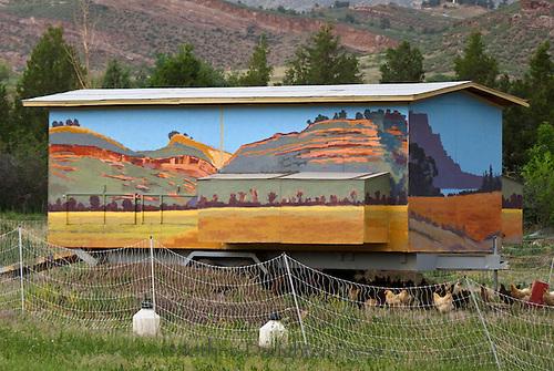 Mobile chicken house at Sunrise Farms, Loveland Colorado