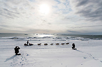 Aliy Zirkle runs on the Bering Sea ice near Nome with open water and icebergs in the background on her way to a 4th place finish of the 2019 Iditarod on Wednesday March 13<br /> <br /> Photo by Jeff Schultz/  (C) 2019  ALL RIGHTS RESERVED