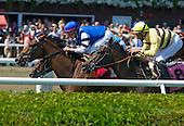 5th - Burndines (plus jockey legends)