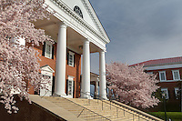 Darden School of Business at the University of Virginia.