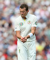 Peter Siddle of Australia - England vs Australia - 5th day of the 5th Investec Ashes Test match at The Kia Oval, London - 25/08/13 - MANDATORY CREDIT: Rob Newell/TGSPHOTO - Self billing applies where appropriate - 0845 094 6026 - contact@tgsphoto.co.uk - NO UNPAID USE