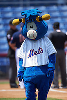 Binghamton Mets mascot Bullwinkle before a game against the Richmond Flying Squirrels on June 26, 2016 at NYSEG Stadium in Binghamton, New York.  Binghamton defeated Richmond 7-2.  (Mike Janes/Four Seam Images)