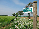 Stour and Orwell Walk, Falkenham near Felixstowe