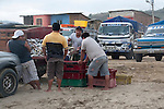 the fish market of puerto lopez ecuador