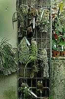 Incubators, restored 1995-97, Paul Chemetov and Borja Huidobro, Jardin des Plantes, Museum National d'Histoire Naturelle, Paris, France. General view of Epiphytes seedlings in pots against a wall and in a hanging metal rack.