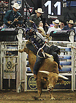 Ednei Caminhas from Brazil rides Yellow Jacket Jr. during the Built FordTough Series Copenhagen Bull Riding Invitational in Reno, Nevada on Saturday night Sept. 12th.  Photo by Tom Smedes.