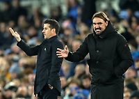 23rd  November 2019; Goodison Park , Liverpool, Merseyside, England; English Premier League Football, Everton versus Norwich City; Norwich City manager Daniel Farke and Everton Manager Marco Silva react on the touchline  - Strictly Editorial Use Only. No use with unauthorized audio, video, data, fixture lists, club/league logos or 'live' services. Online in-match use limited to 120 images, no video emulation. No use in betting, games or single club/league/player publications