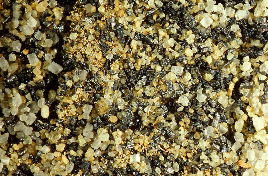 GRAINS OF SAND<br />