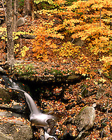 Waterfall and fall color in the White Rocks Recreation Area; Green Mountain National Forest, VT